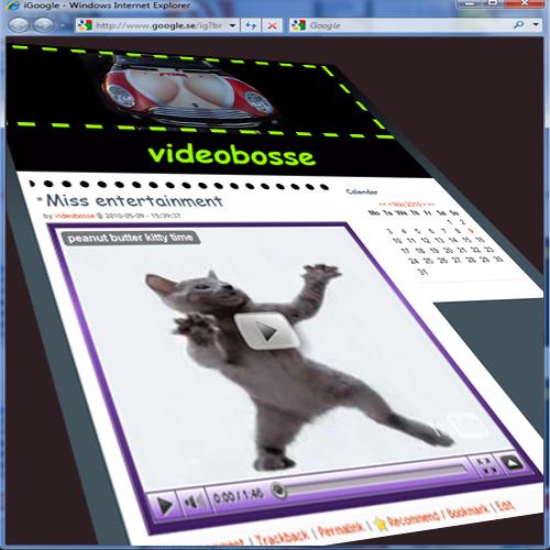 Videobosse katt.jpg