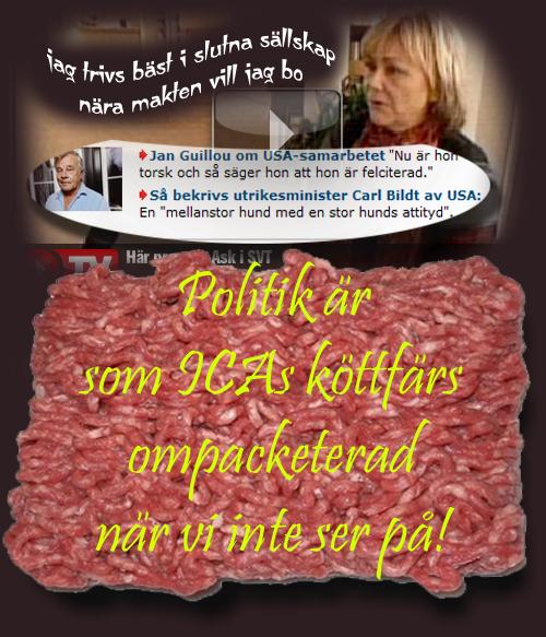 Köttfärspolitik.jpg