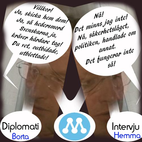 Bildt diplomat.jpg