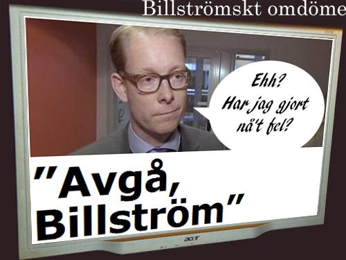 Billström omdöme.jpg