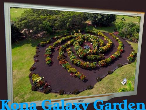 Galaxy Garden.jpg