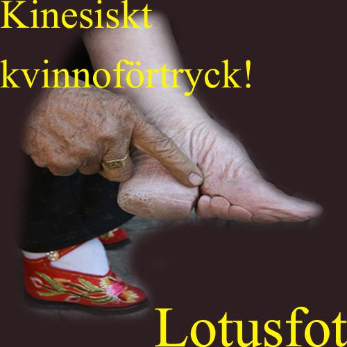 Lotusfot.jpg