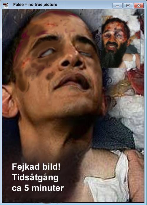 Fejkad död Obama.jpg