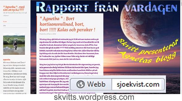 Agnetas blogg