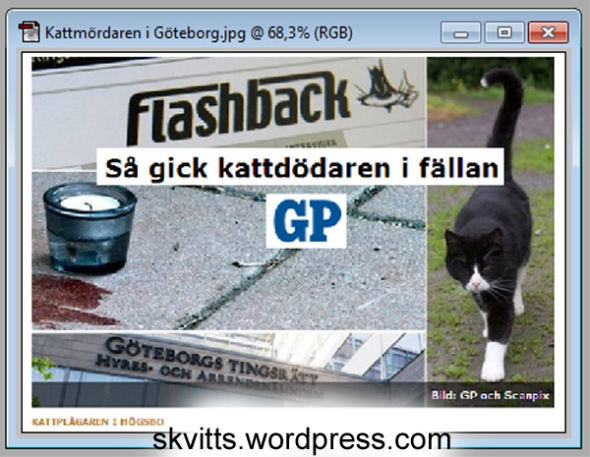Kattmördaren i Göteborg