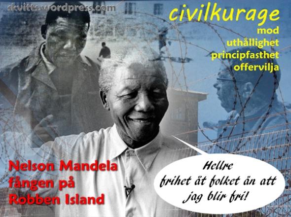 Mandela Robben I